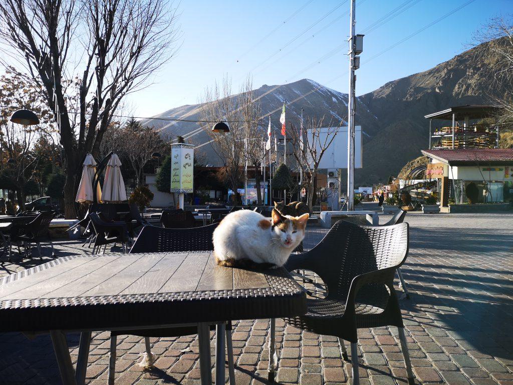 Teheran-Tipps-Norden-Berge-Sommerrodelbahn