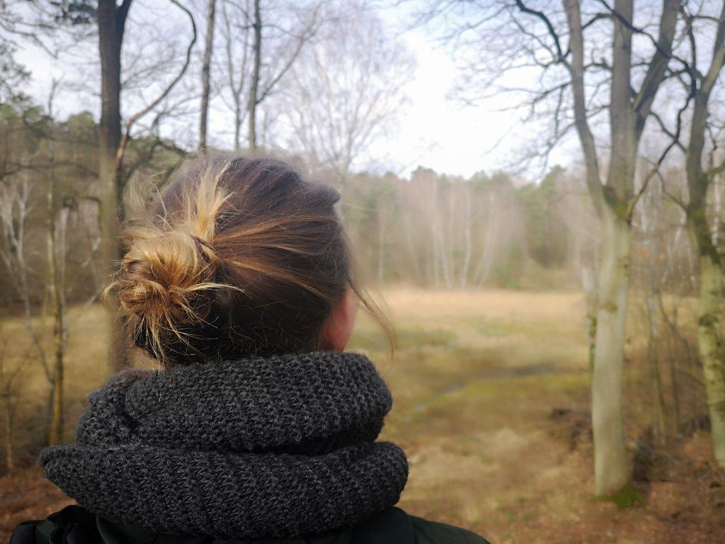 blick aufs moor grunewald