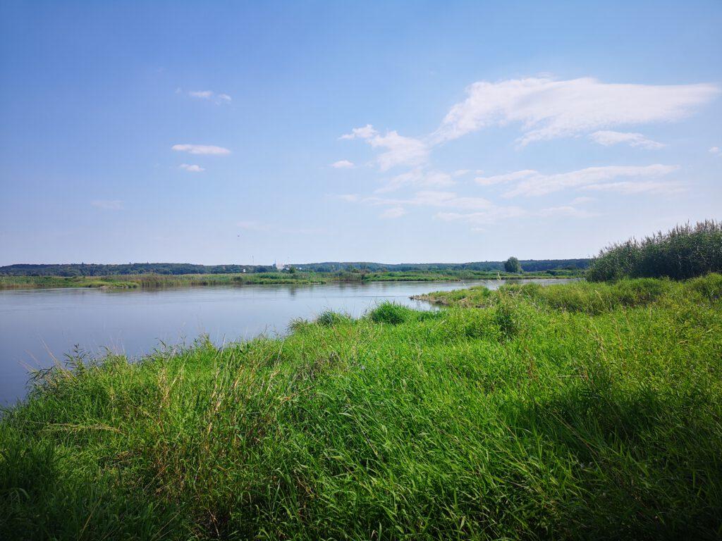 Frankfurt-Oder-Tipps-Gruenes-Flussufer-Spaziergang