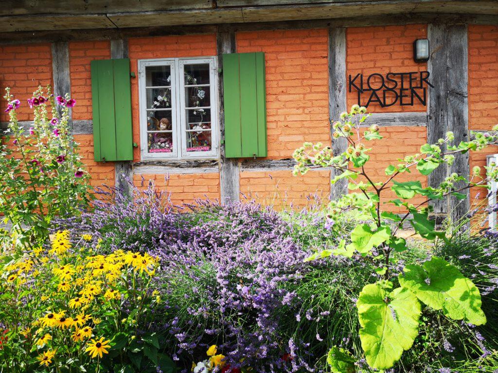 Kuelungsborn-Urlaub-Ausflug-Bad-Doberan-Muenster-Klostergarten