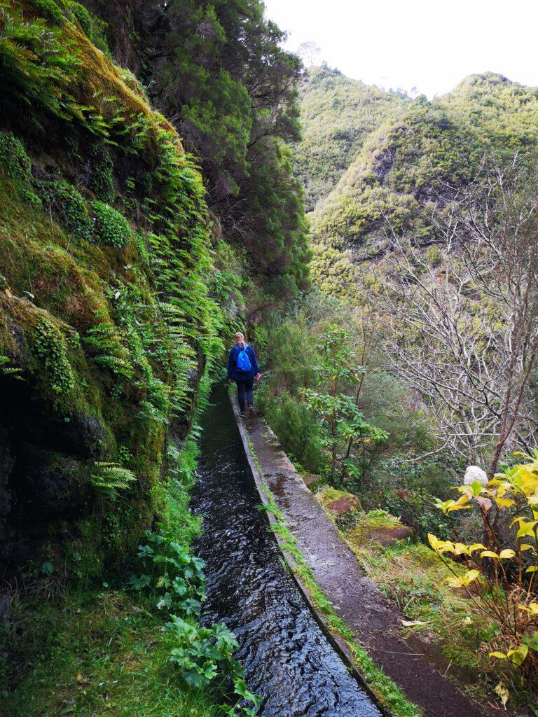 Madeira-Tipps-Levada-Wanderung