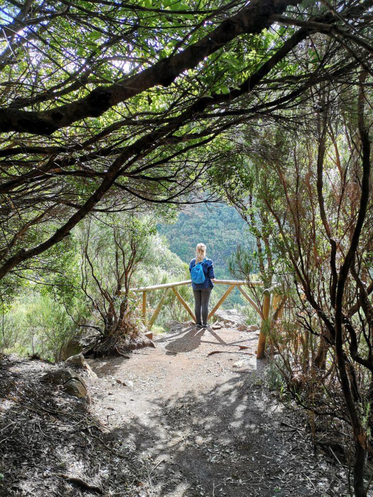 Madeira-Tipps-Wandern